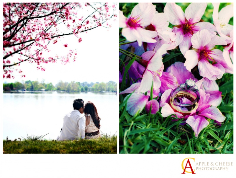 Michael and Chrystine Engagement Photography Session Lake Balboa Encino CA